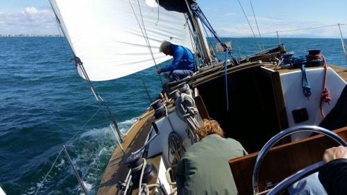 regata camillo 2016 2 49-12