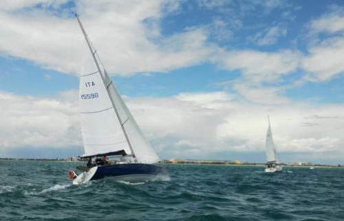 regata camillo 2016 2 49-15
