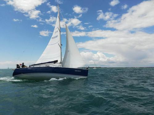 regata camillo 2016 2 49-17