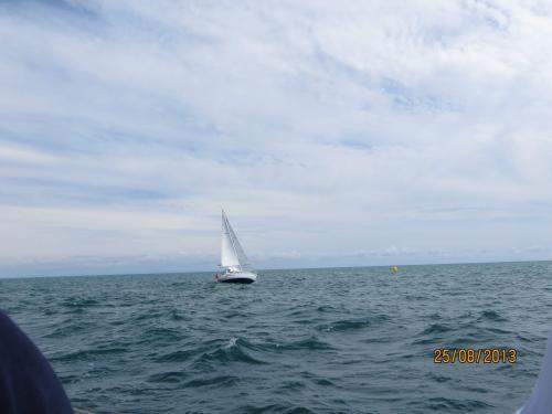 regata della madonnina 2013 cabinati 11-19