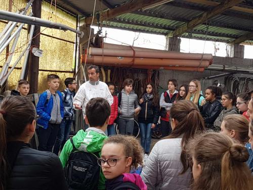 scuola_marconi-ceggia (3)
