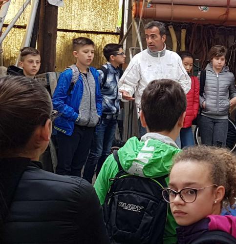 scuola_marconi-ceggia (6)